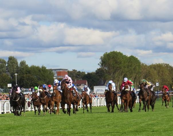 ICHIRF Horse Racing