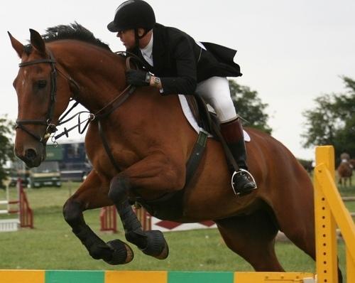 ICHIRF Equestrian